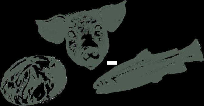 Illustration Speisen